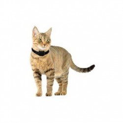 Raadiopiire kassile või väiksele koerale Canifugue Small